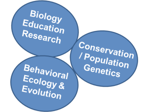 ResearchAreas